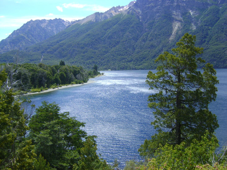 Bosques y lagos Patagonicos