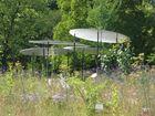 Bot. Garten München 2