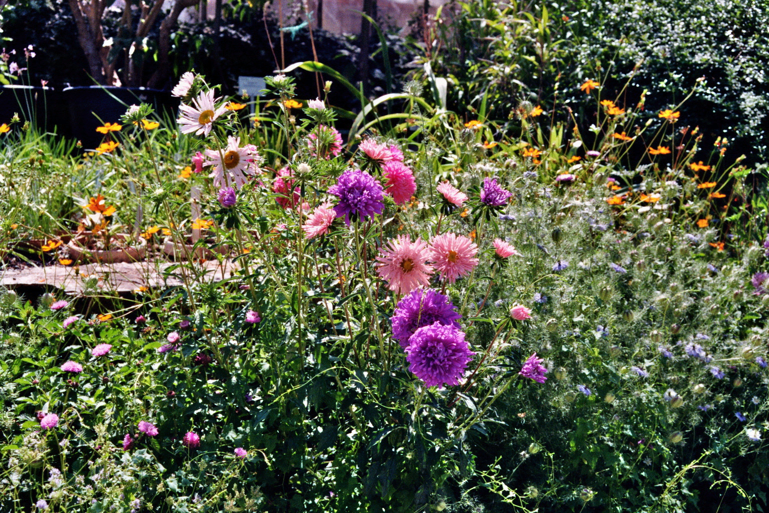 Botan. Garten Graz