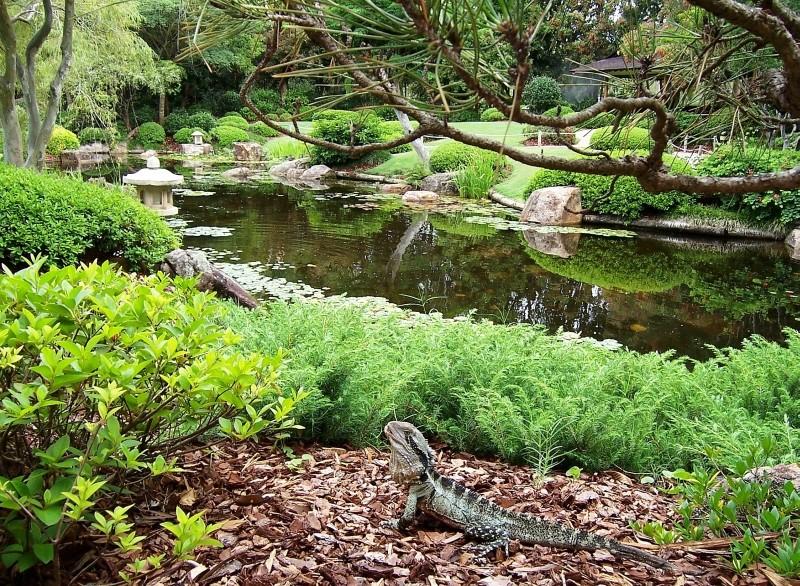 Botanic Garden - Brisbane
