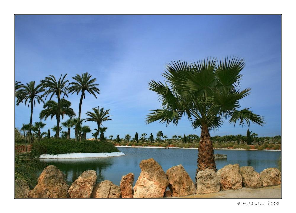 *Botanicactus-Park*
