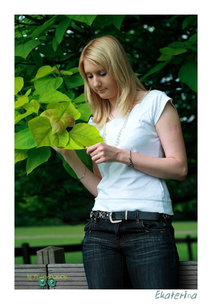 Botanische Studien