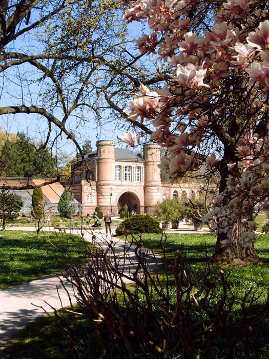 Botanischer Garten, April 2007