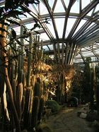 Botanischer Garten Berlin Dahlem -2-