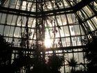 Botanischer Garten Berlin Dahlem -5-