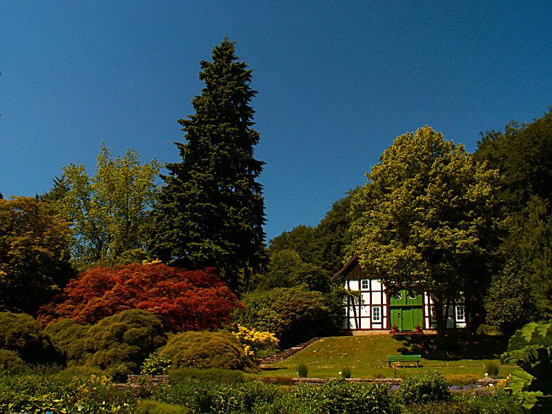 botanischer Garten Bielefeld