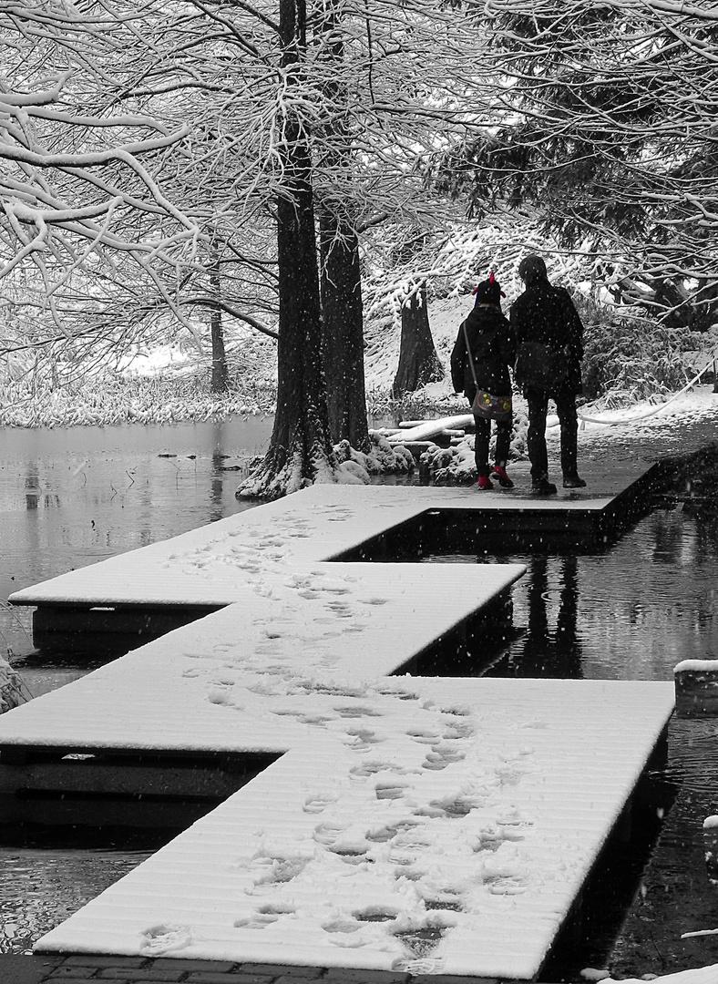 Botanischer Garten    Bochum # 1.0.