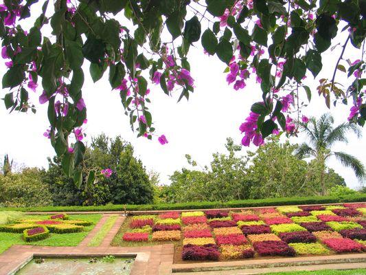 Botanischer Garten Funchal (Monte)