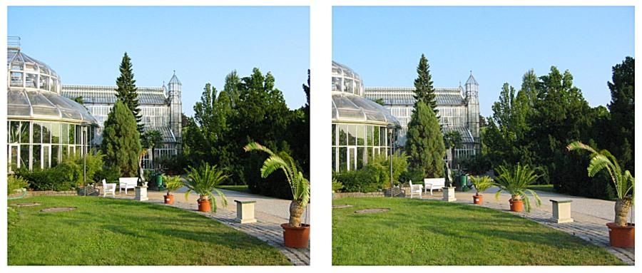 Botanischer Garten im Kreuzblick