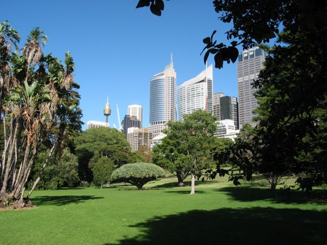 Botanischer Garten in Sydney