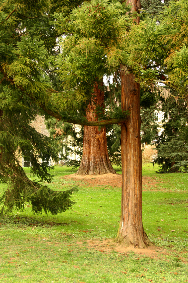 Botanischer Garten Uni Hohenheim