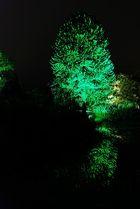 Botanischer Garten Wuppertal