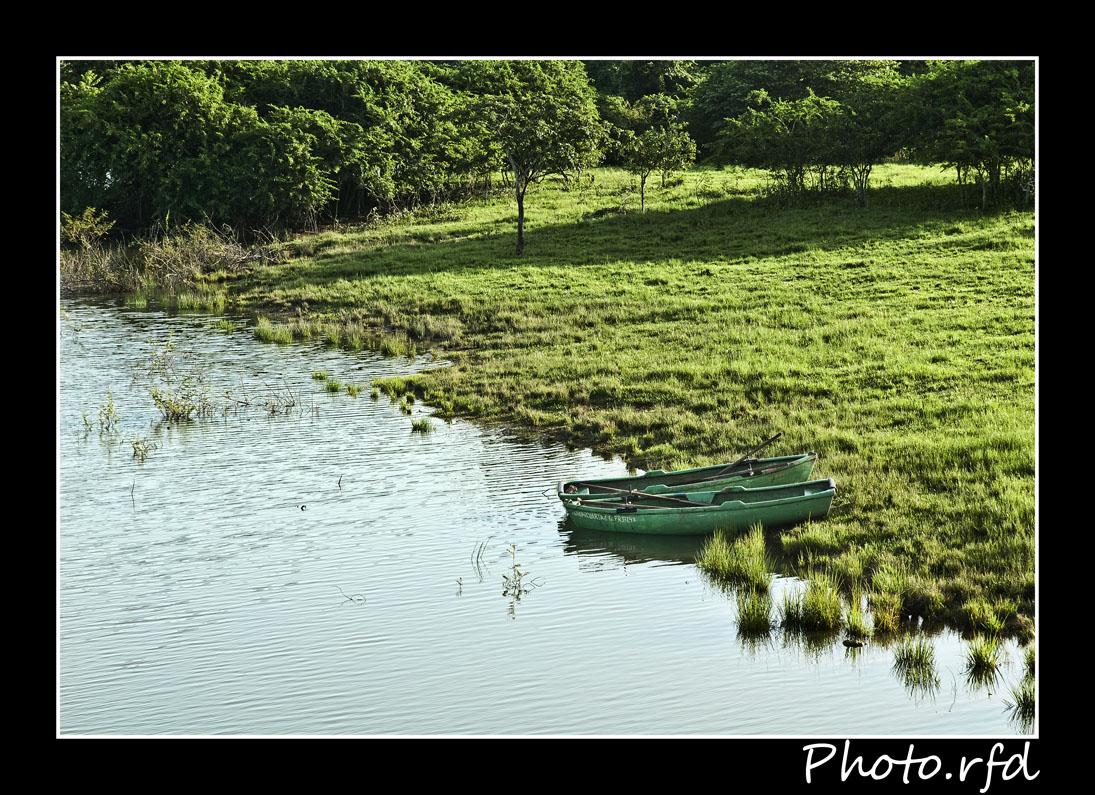 Botes en la orilla