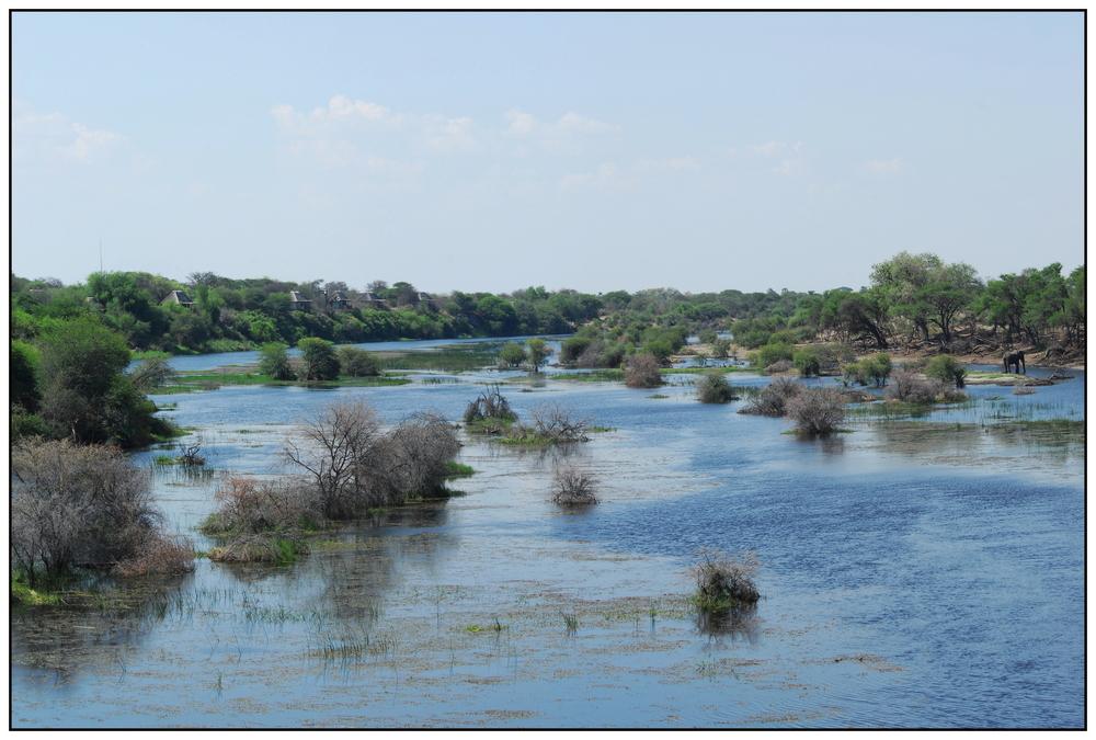 Boteti River bei Khumaga