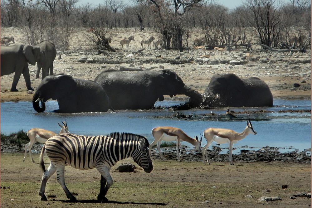 Botswana-2