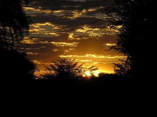 Botswana's burning sky...