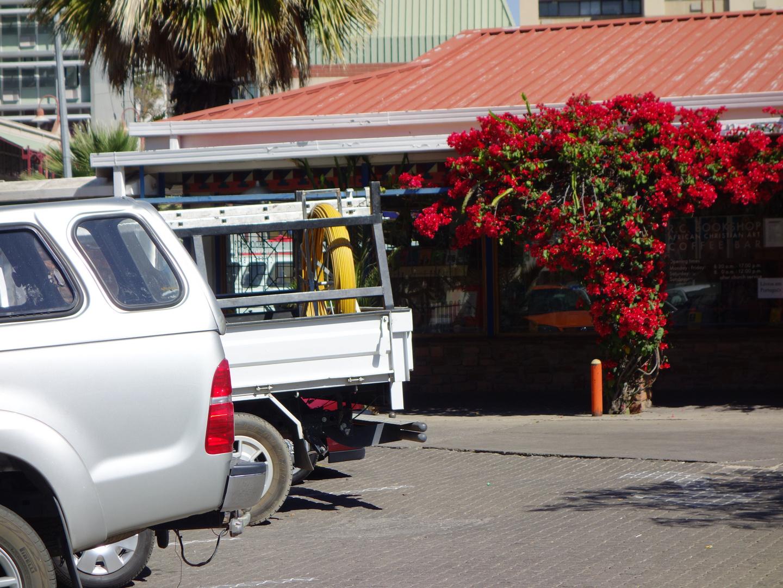 Bougainvillias auf dem Parkplatz