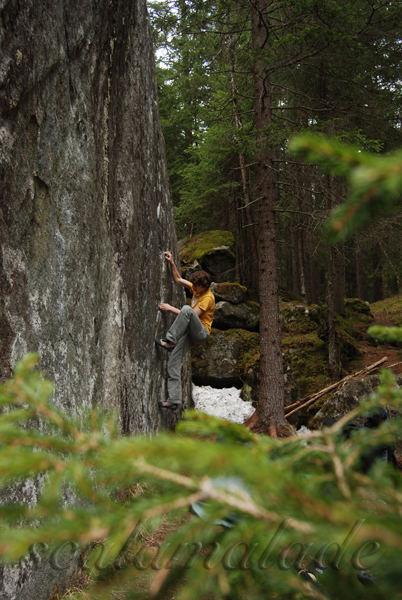 Bouldern im Averstal (Magic Wood)