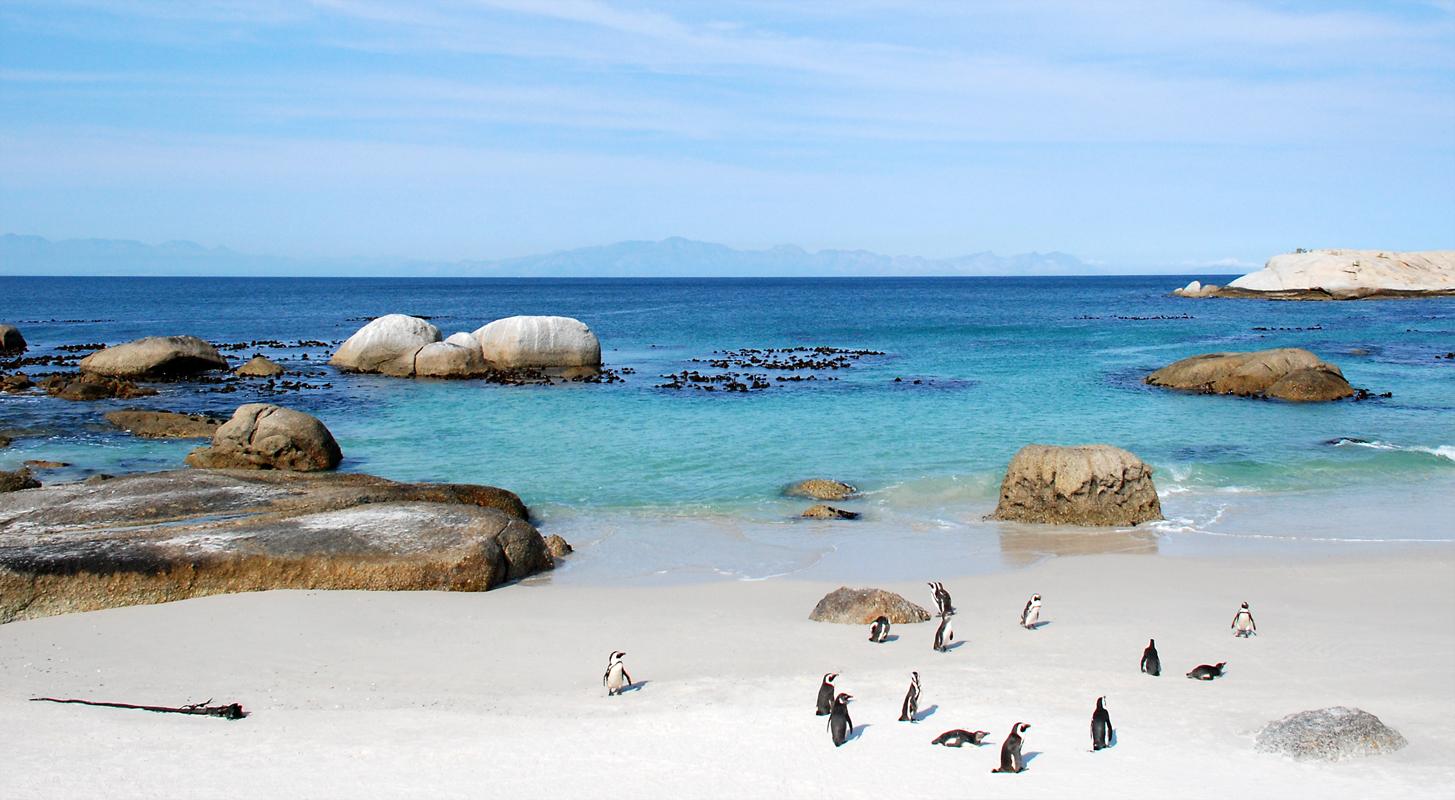 Boulders Beach bei Kapstadt