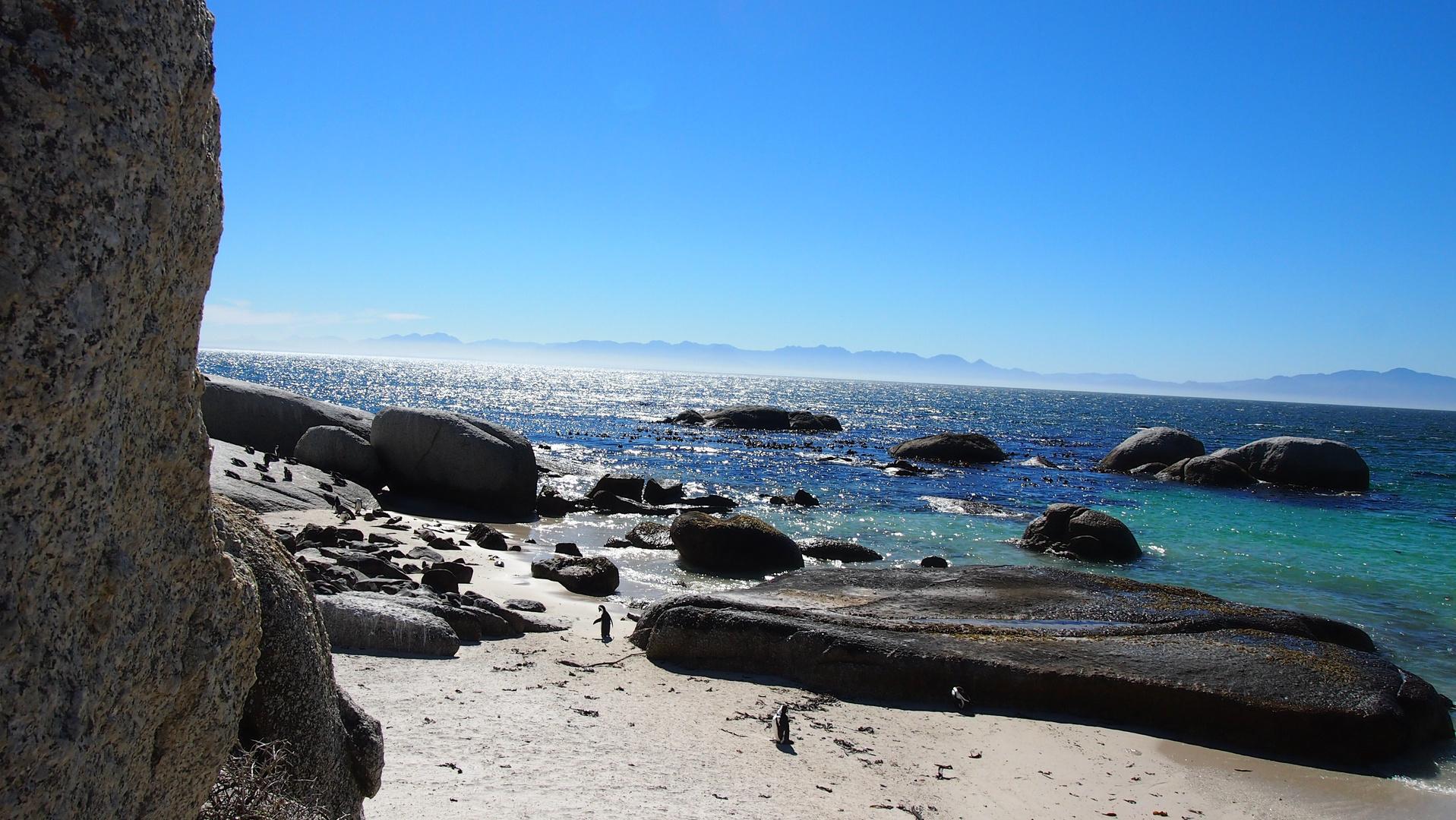 Boulders Beach Suedafrika