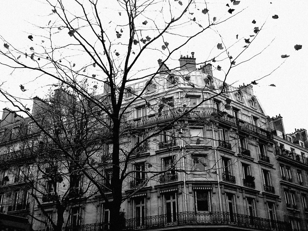 Boulevard St-Germain