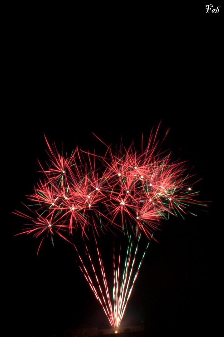 Bouquet de feux