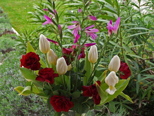 Bouquet printanier  --  Frühlingsstrauss