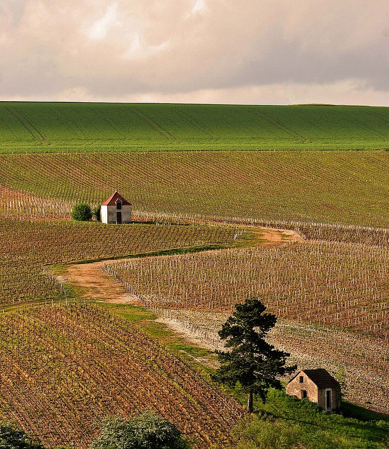 Bourgogne, aout 2005