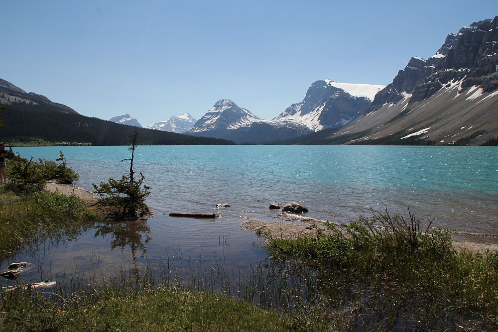 Bow Lake am Icefield Parkway