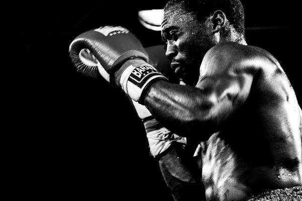 Boxer SW