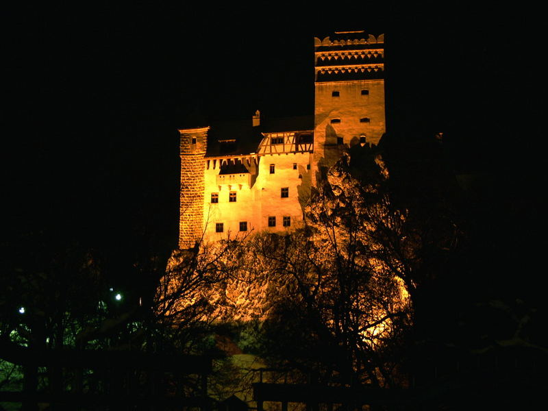 bran castle in the night
