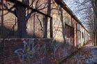 Brandenburg, 29.01.11 – 22