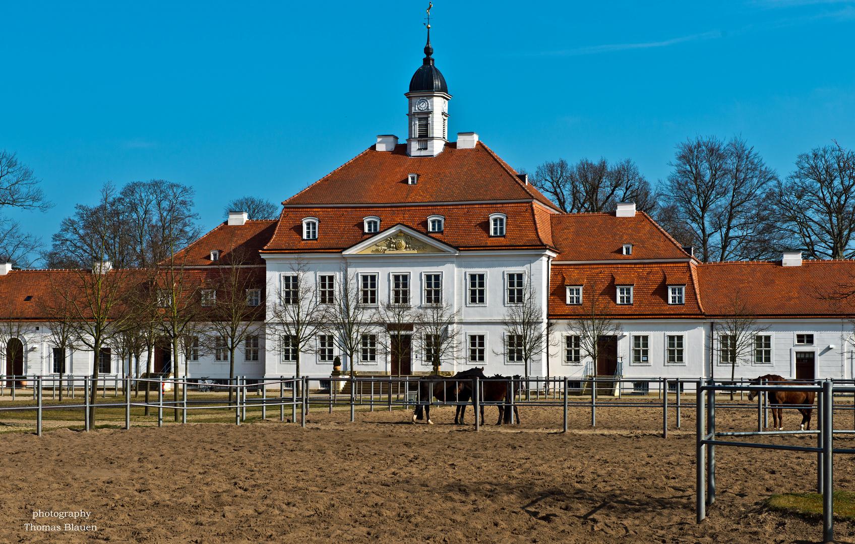 Brandenburgisches Haupt- und Landesgestüt Neustadt (Dosse) 5