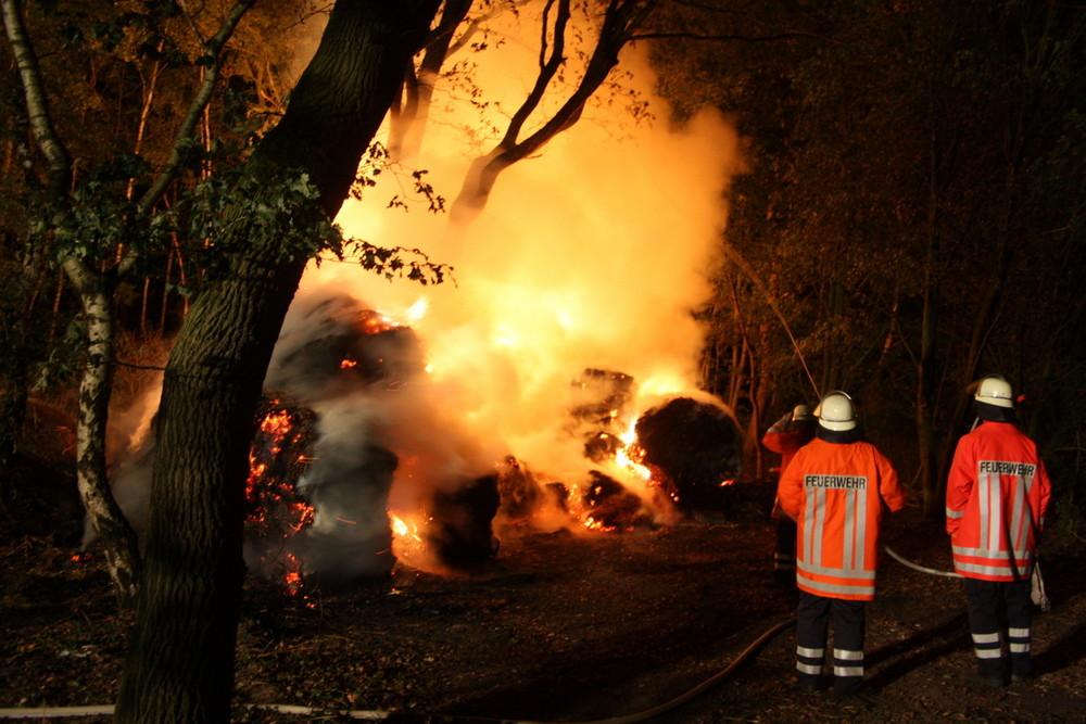 Brandserie in Schneeren(2)