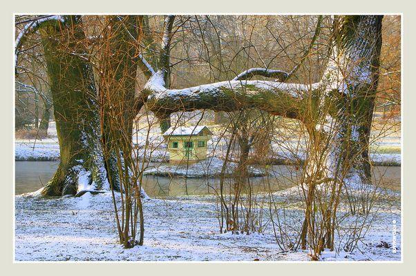 Branitz, ein Wintermärchen... (8)