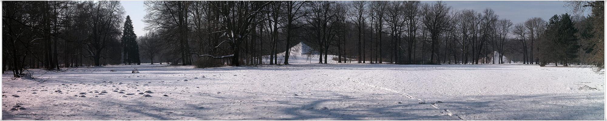 Branitz - (m)ein Wintermärchen . (20)