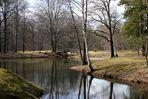 Branitzer Park im März .....2.......