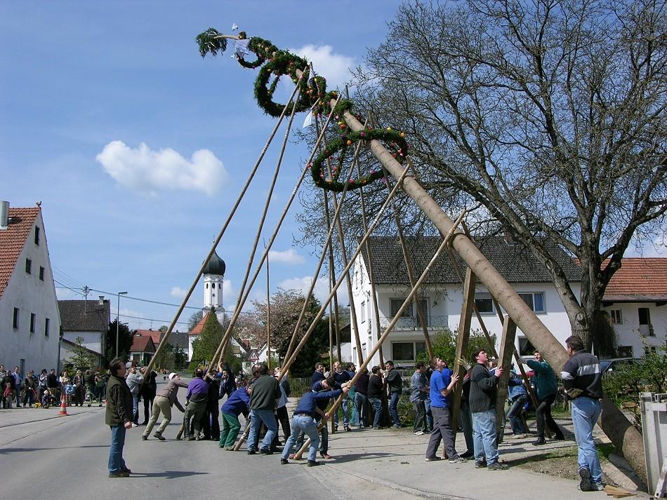 Brauchtum : Aufstellen eines Maibaumes wird immer am 1.Mai durchgeführt