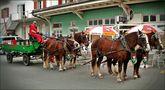 Brauerei Pferdegespann Worb . . . . . Chevaux de la Brasserie von Rosetta4