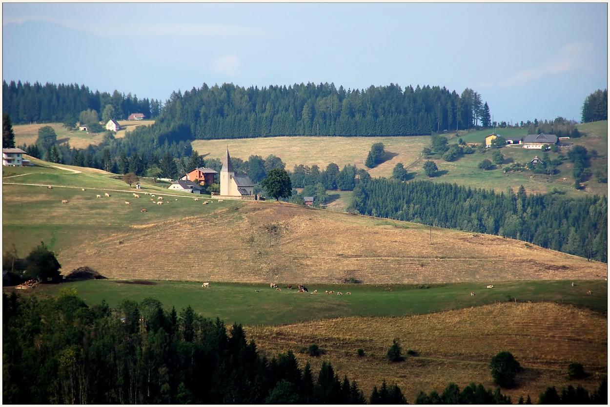 Braune Weiden