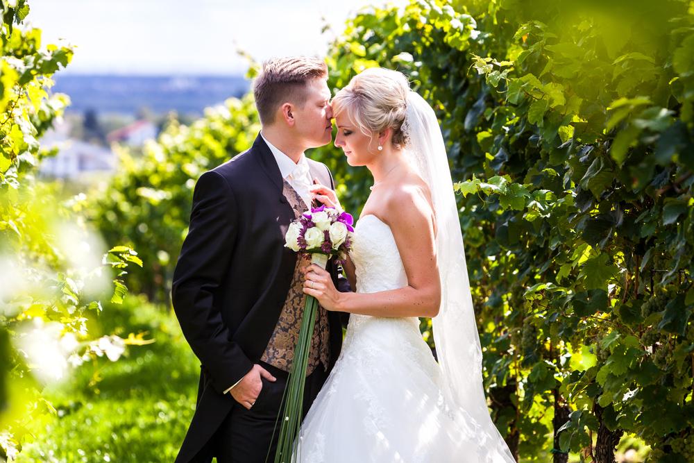 Brautpaar Im Weinberg