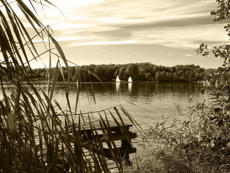 Breitenauer See Herbst 2010 / 7