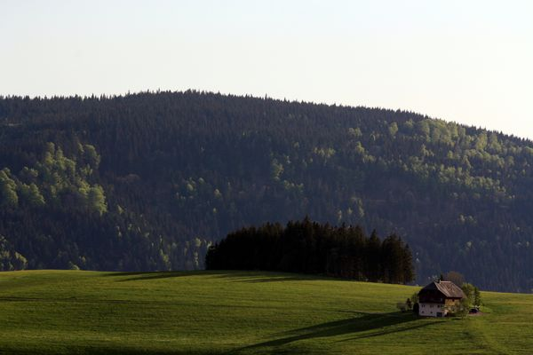 Breitnau im Schwarzwald I