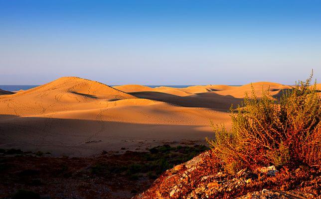 Brennend heisser Wüstensand