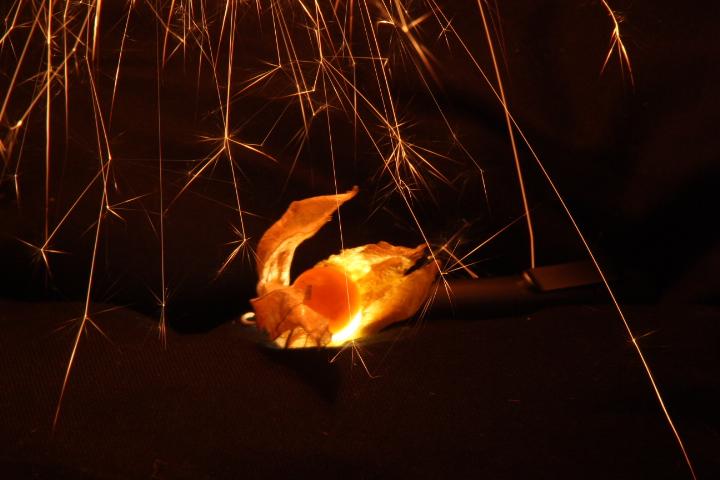 brennende Physalis