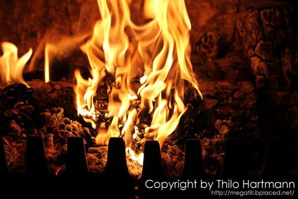 Brennende Tannenzapfen