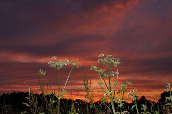 Brennender Himmel über Wales