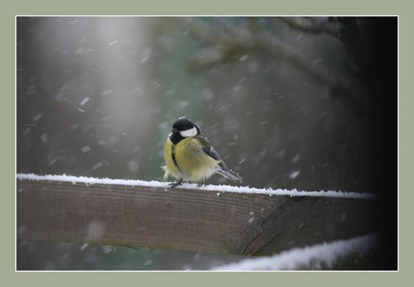 Breu....;il n'en finit jamais cet hiver.