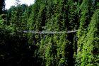 ...bridge over.........