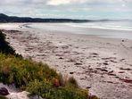 Bridgewater Beach